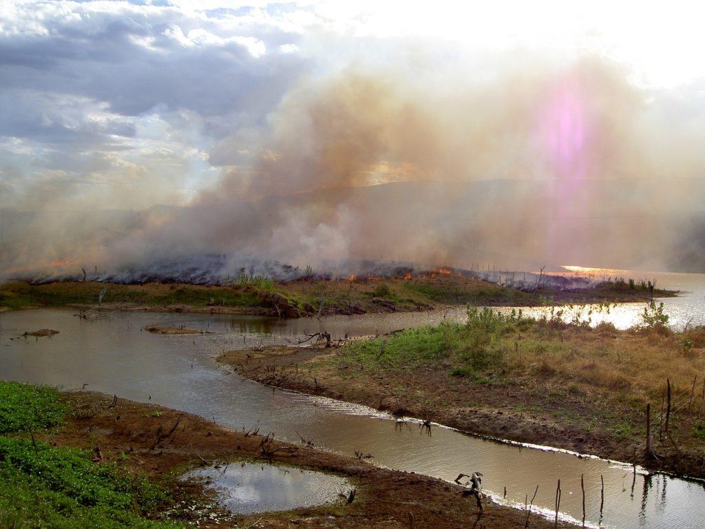 L'utilisation de l'agriculture sur brûlis