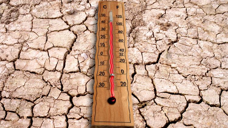réchauffement climatique.
