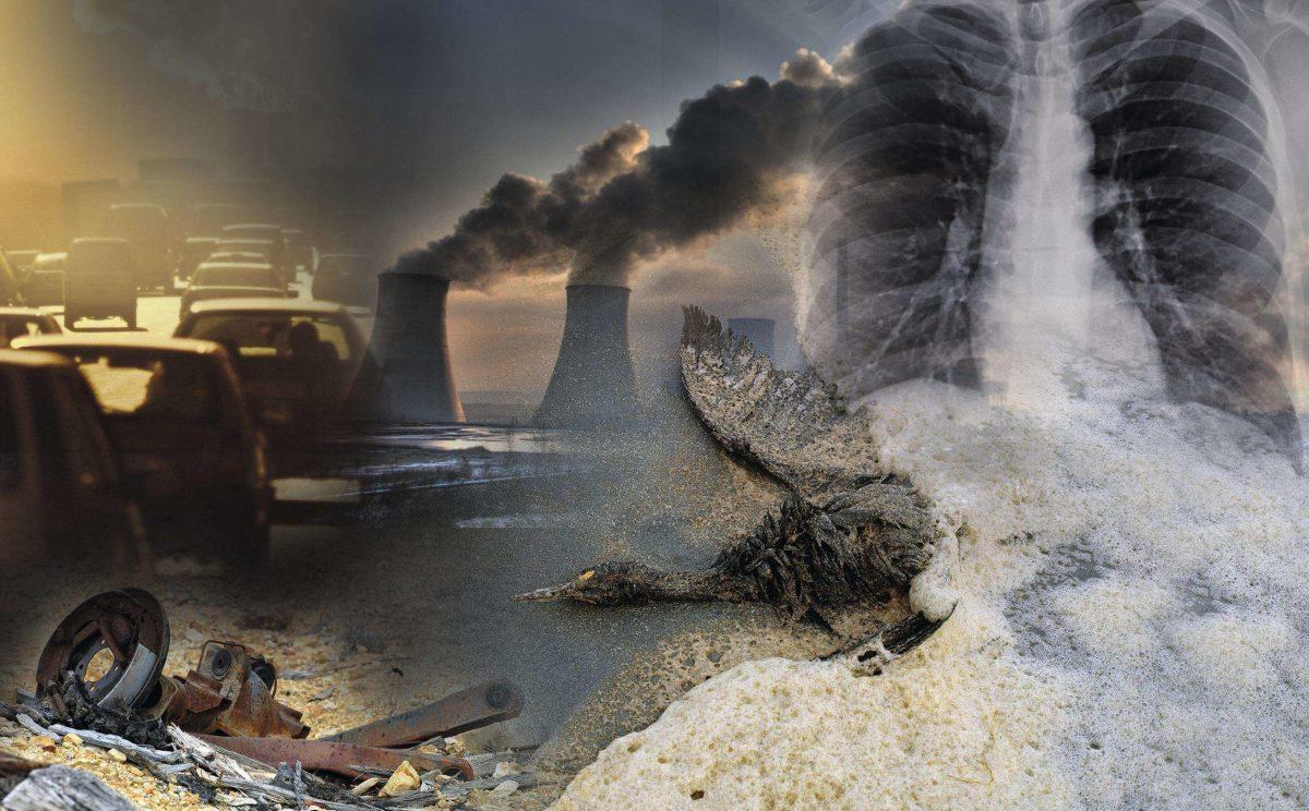 les réels dangers de la pollution.
