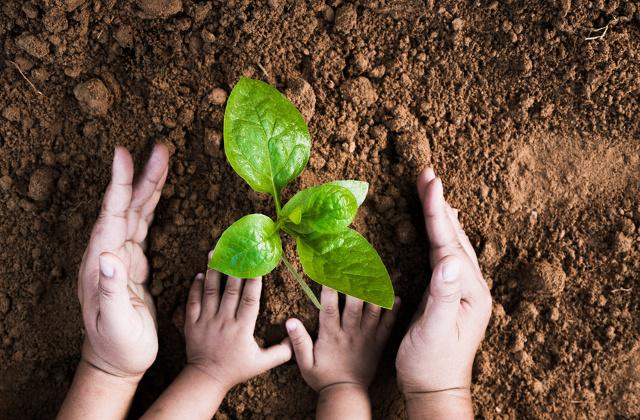 faire comprendre aux enfants l'importance de l'environnement.