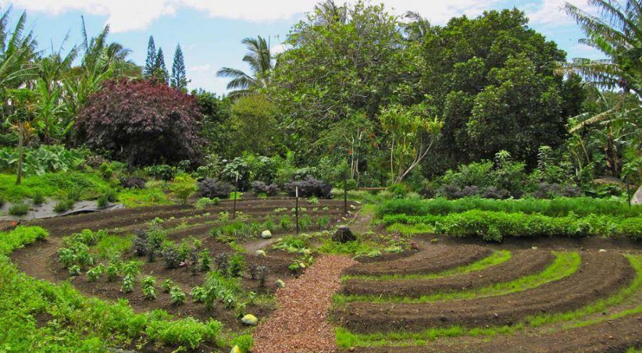 La permaculture.