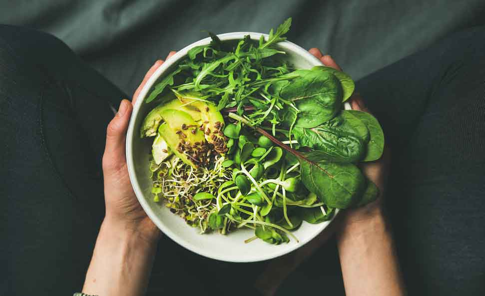 l'impact environnemental du végétarisme.