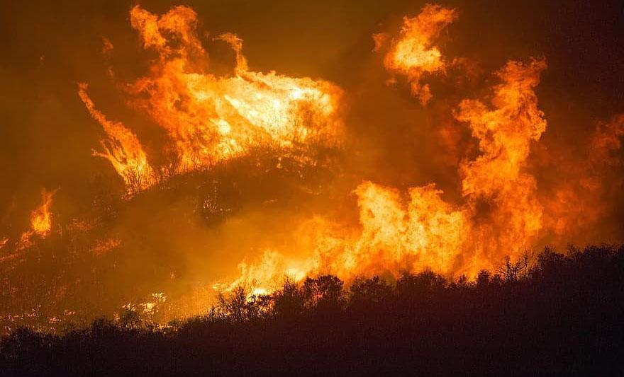 feux de forêt.